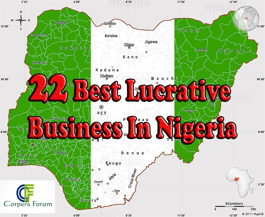 22 best Lucrative Business In Nigeria