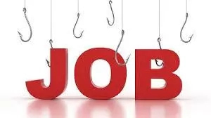 How To Get A Paid Job Amid High Unemployment Rate