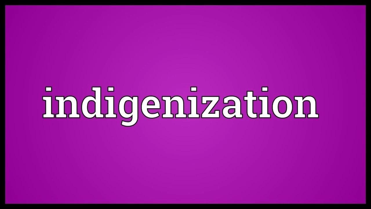 Importance of Indigenization in Nigeria