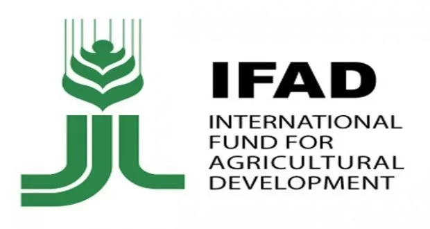 $10,000 IFAD Research Grant 2018 | International Fund for Agricultural Development